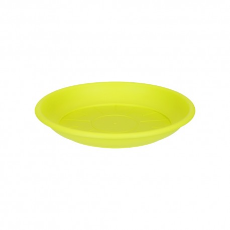 saucer round 21cm lime green