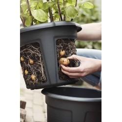 elho Vaso per patate green basics 33cm nero vivo