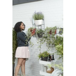 elho loft urban green wall rack living black