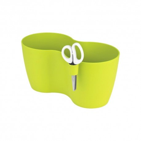 brussels herbs duo l lime green